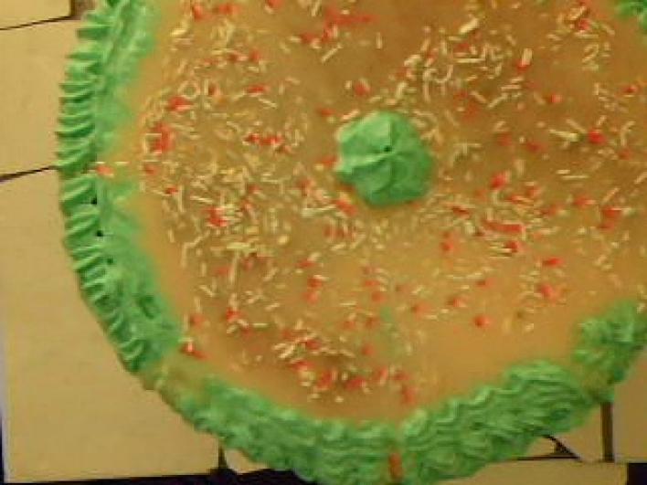 Marcipán torta